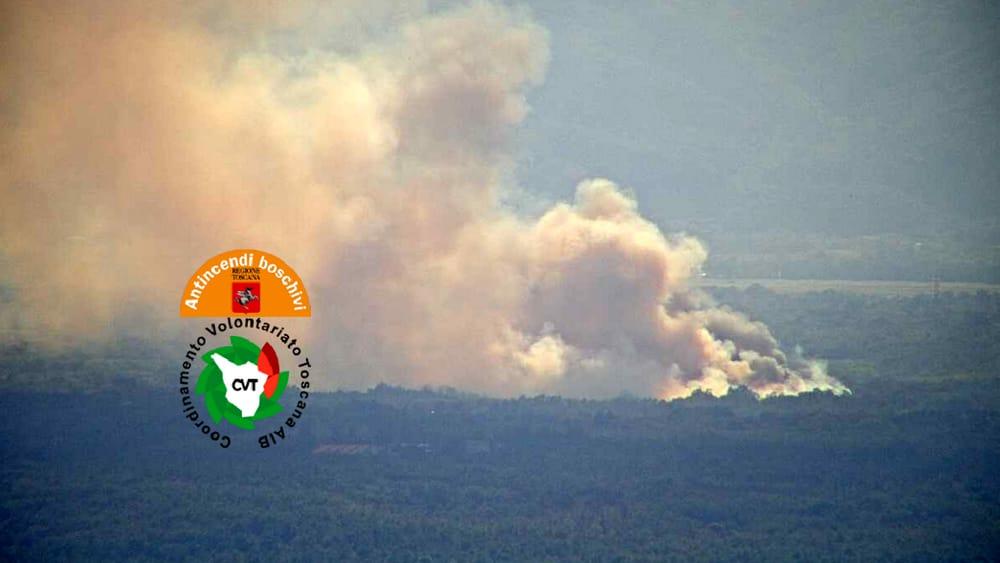Incendio a Staffoli: in fiamme una vasta porzione di pineta
